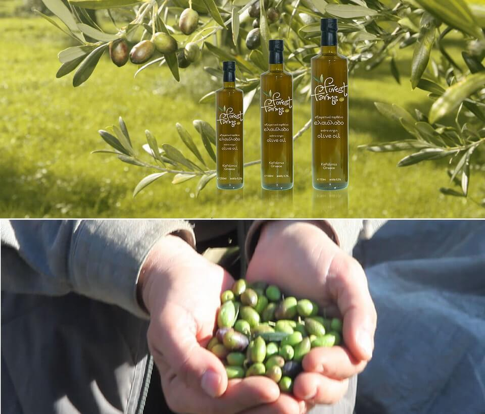 Olive Oil - The fluid gold of Kefalonia